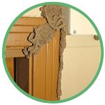sign of termite