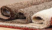 pest control carpet
