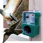 bird repellent