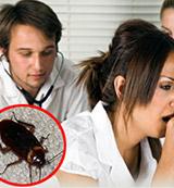 Cockroacehs Disease